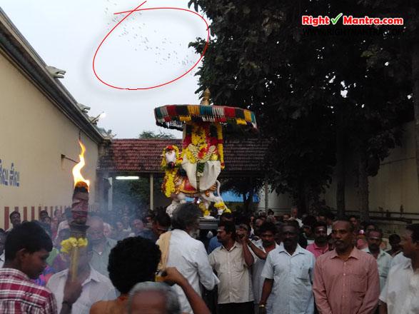 Pradhosha Urchavam 4