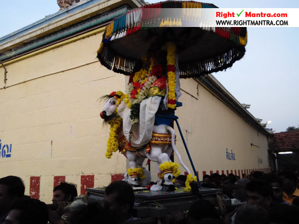 Pradhosha Urchavam 5