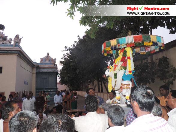 Pradhosha Urchavam 8