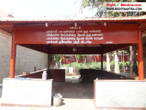 கரூர் பசுபதீஸ்வரர் ஆலய கோ-சாலை