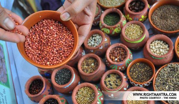 Indian Millets