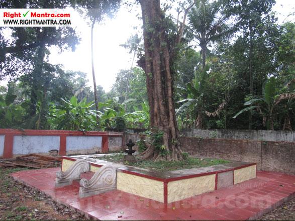 Kalady Krishnan Koil 15