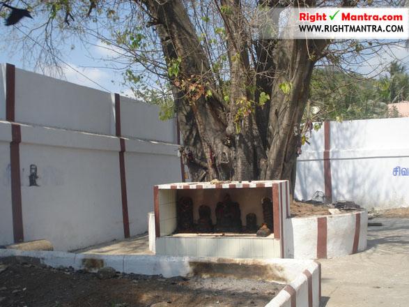 Thirisoolam Kailasanadhar temple 28