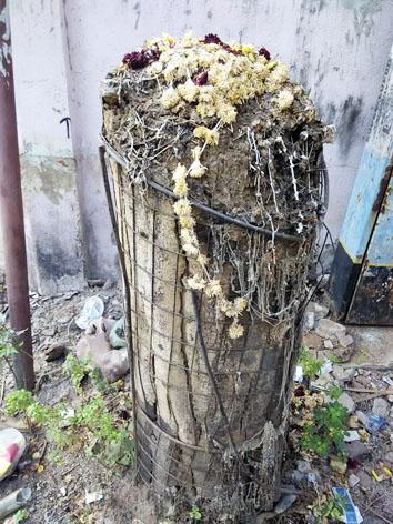 CATTLE GUARD அகற்றப்படாததால் உயிர் நீத்த ஒரு மரம்!