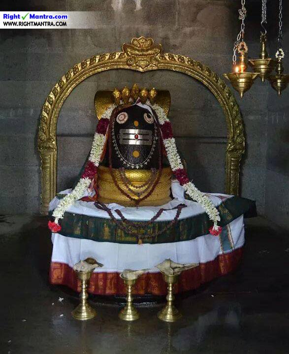 Thalaivar Eesan