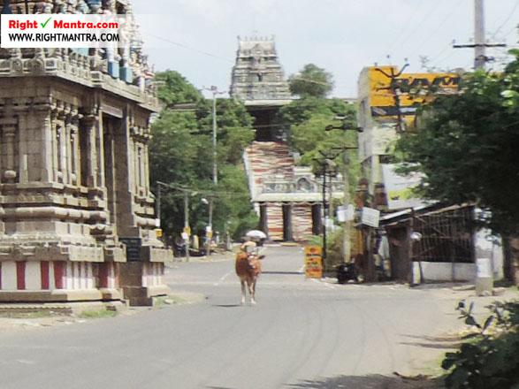 Thiruvooragap perumal kovil 2