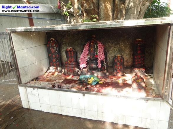 Tirisoolam Uzhavarappani 17