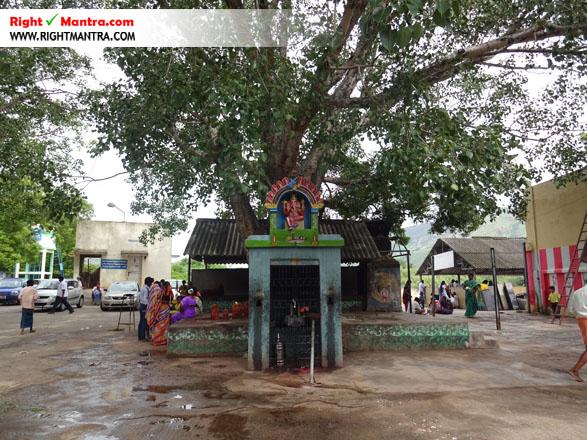 Maddur Mahisashura Marthini Temple 10