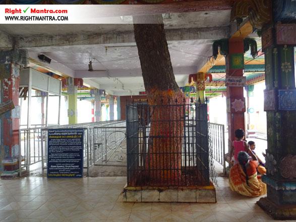 Maddur Mahisashura Marthini Temple 15