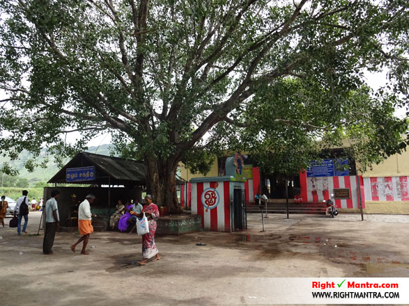 Maddur Mahisashura Marthini Temple 19
