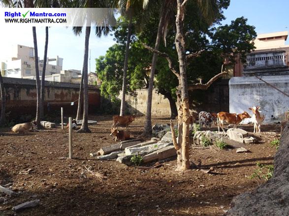 Poonamallee Varadharajap perumal temple 3