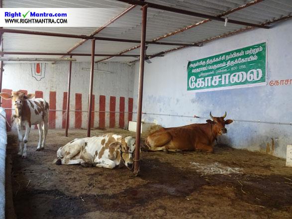 Poonamallee Varadharajap perumal temple 7