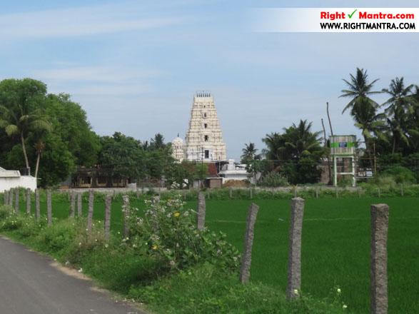 Narasingapuram Lakshmi Narasimmar J