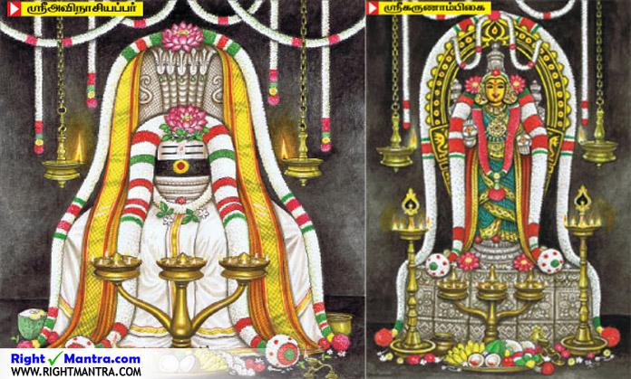 Avinasiyappar