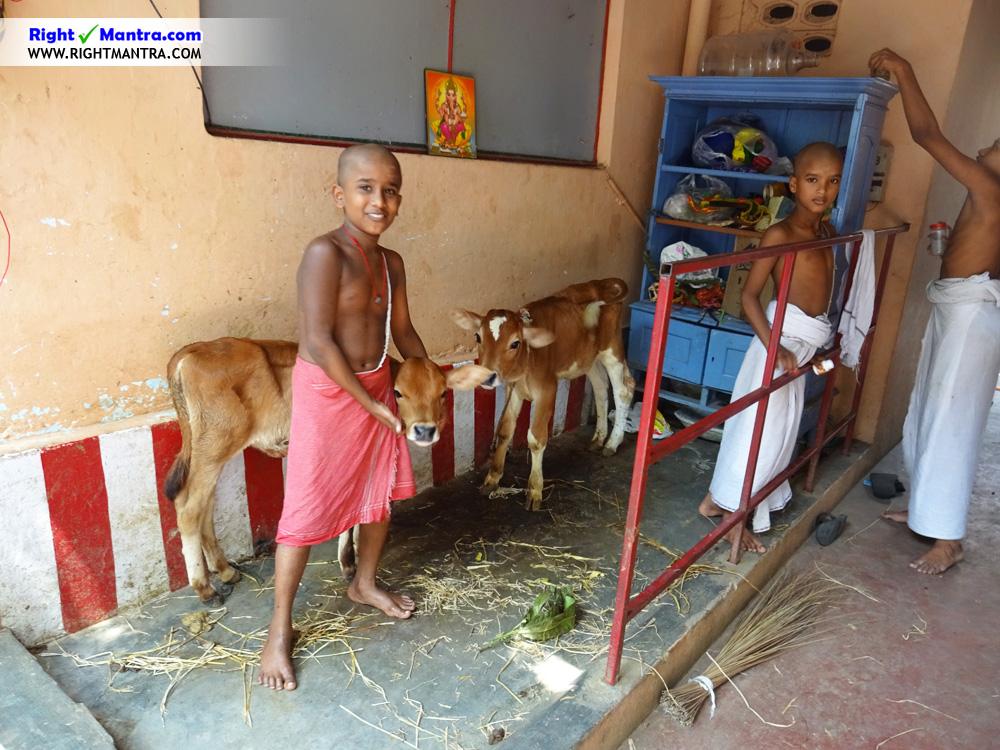 Sathguru Sabha 3