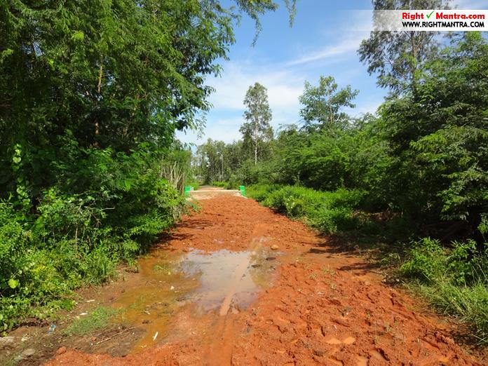 Nambakkam road2
