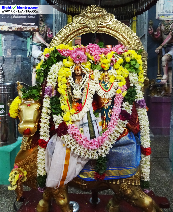 lord siva with parvati