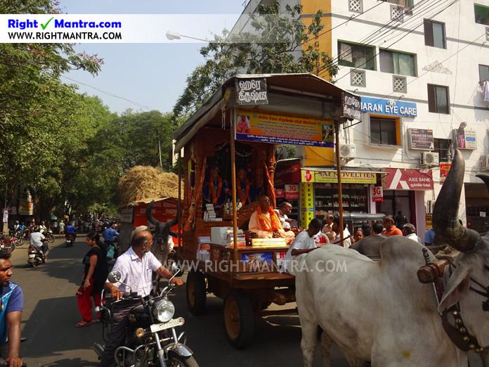Hare Krishna Bullock Cart 5