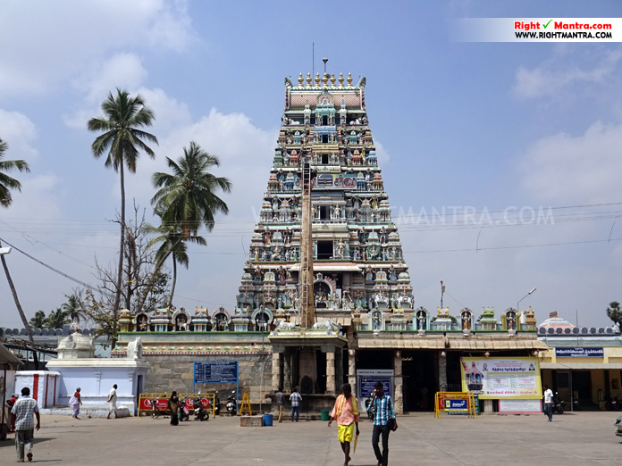 Avinasi Gopuram6