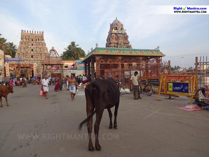 Mahamagam 4