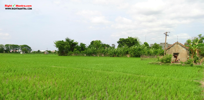 agricultural land nagappattinam district