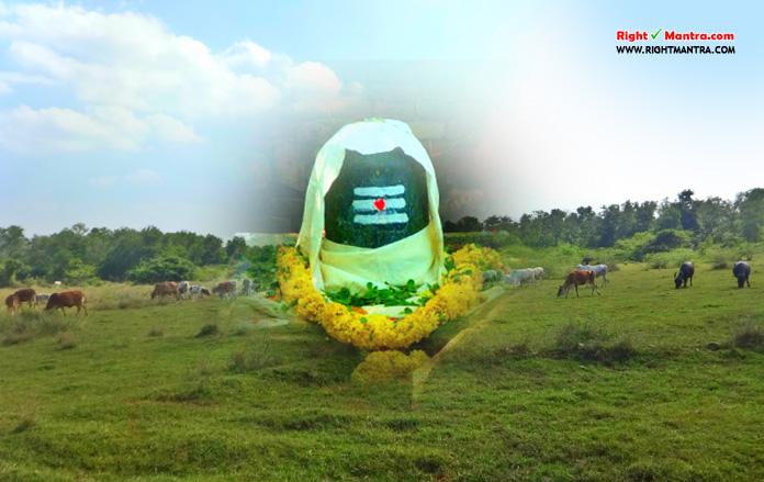 Sivapunniyam Nandagopan